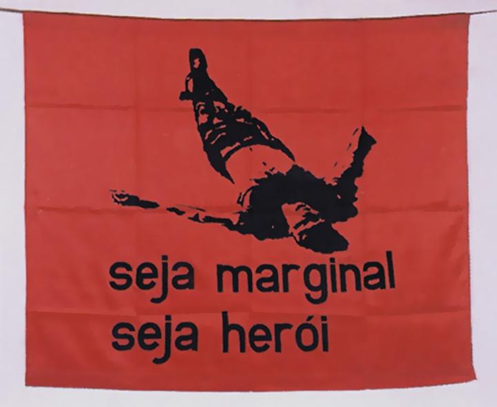 Helio-Oiticica-seja-marginal-seja-herói