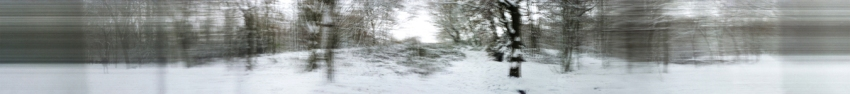 Snow-forest-180