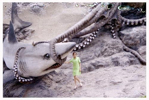 SHARK500PIX