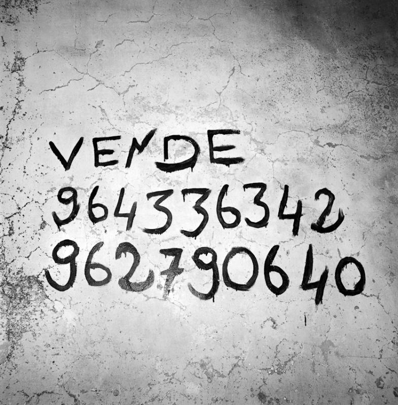 66_pedroguimaraesmonsanto-5