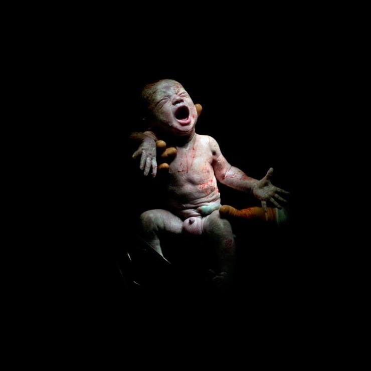 CAESAR #9 Mael, born December 13, 2013 at 4:52 p.m. 2kg 800. 18