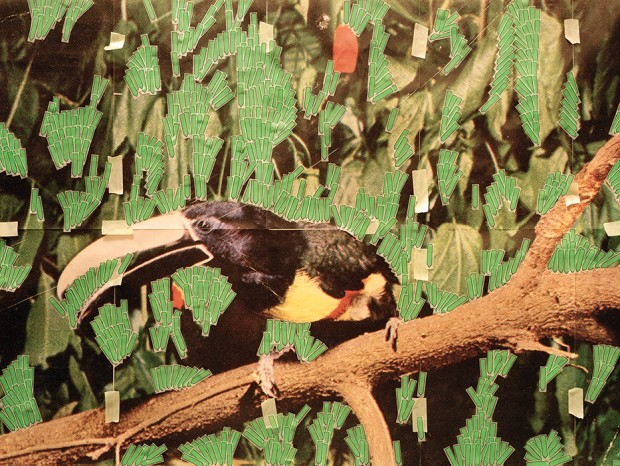 Toucan-in-Nature-(Post-it-notes)
