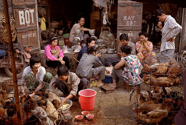 Playing Cards in a Chicken Market, Hanoi, Vietnam 1993 - Mitch Epstein