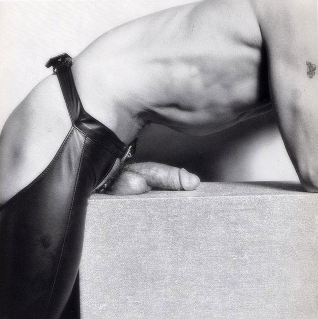 Mapplethorpe5