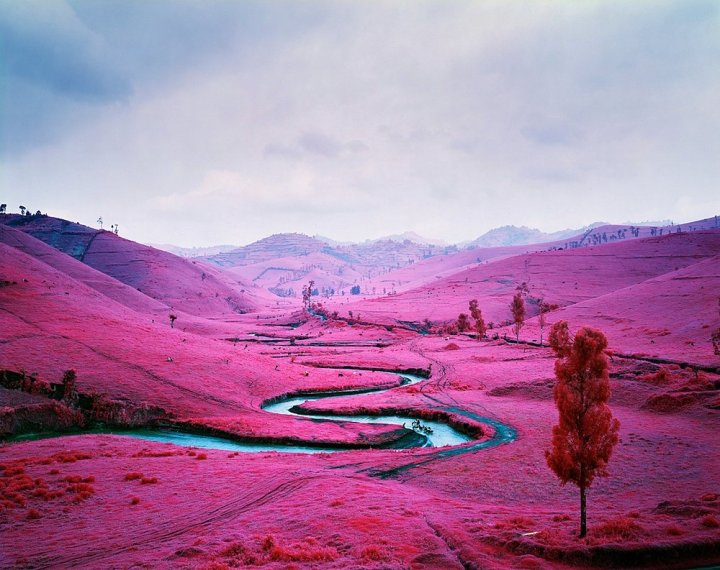 richard-mosse-31