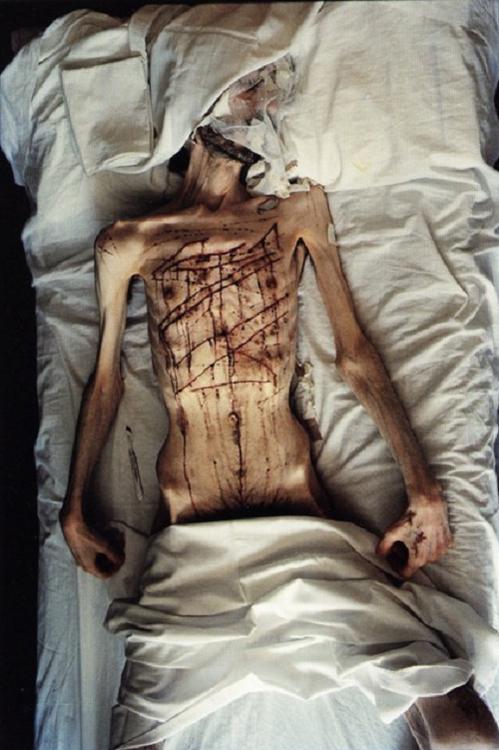 David Nebreda, Après huit séances d'incisions sur la poitrine et les épaules, il atteint à une certaine tranquillité, l´hommage et le tribut étant alors accomplish, 29-7-1989.