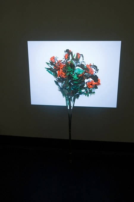 © Akihiko Miyoshi, 'RoRsesResoR', Faux rose spray painted white and projected video image of rose, 2010.